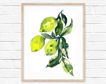 Limes Watercolor Print by HippieHoppy