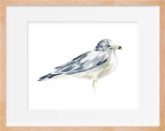 Seagull Watercolor Print