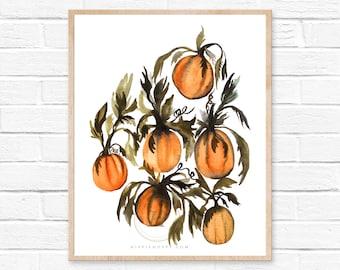 Pumpkin Watercolor Print