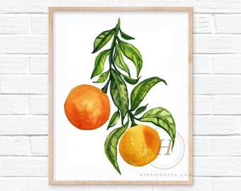 Oranges Watercolor Art Print By HippieHoppy