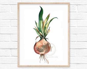 Onion Watercolor Print Vegetable Art