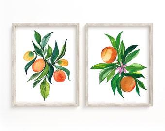 Oranges Set of 2 Watercolor Prints