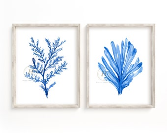 Blue Coral Watercolor Prints