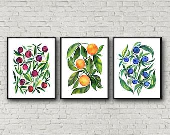Cherry Orange Blueberry prints, Set of 3