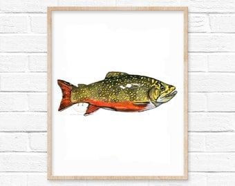 Brook Trout Watercolor Print
