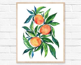 Tangerine Illustration Watercolor Print Tropical Fruit Citrus Botanical Kitchen Art