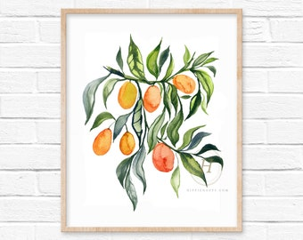 Kumquats Watercolor Print Wall Art