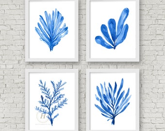 Blue Coral Art Prints