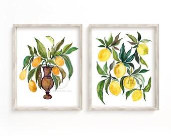 Kumquats and Lemons Watercolor Prints