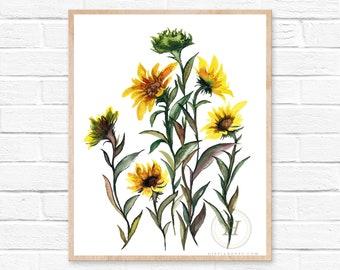 Sunflowers Watercolor Print, Fall Art by HippieHoppy