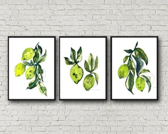 Limes Watercolor Print Set of 3 by HippieHoppy