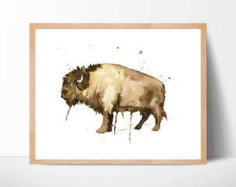 Bison Watercolor Art