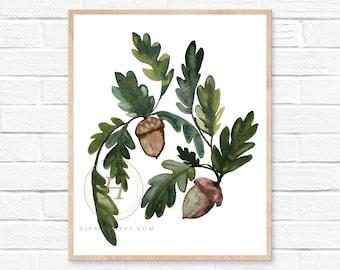 Acorn Watercolor Print
