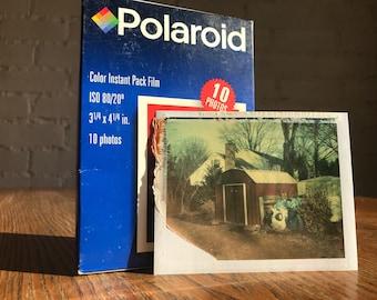 Expired Polaroid 108 film - 1999
