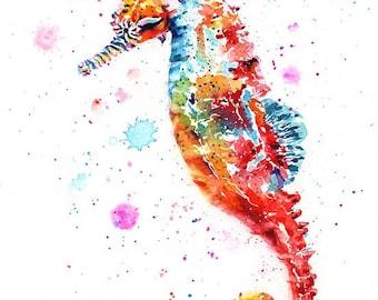 seahorse: framed prints (size 12x17cms or 17x22cms)