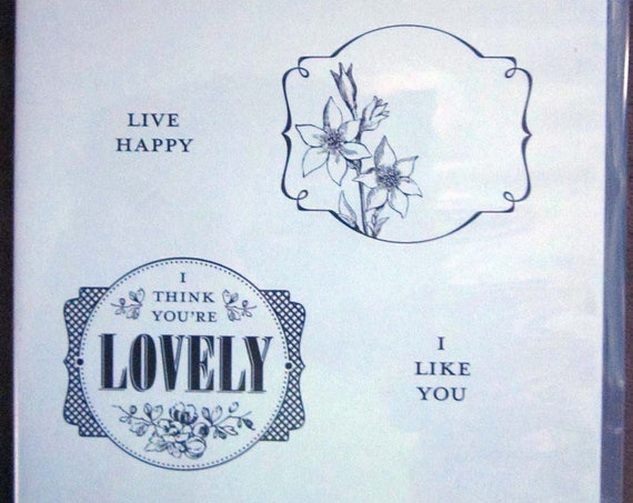 Stampin' Up! You're Lovely clear mount stamp set / Framed stamped images and saying / I like you stamp / You're lovely stamp