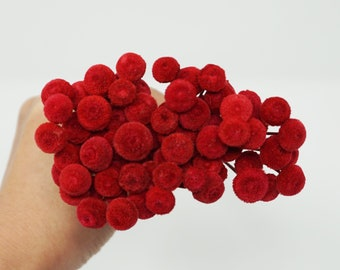 Red, button flowers, Everlast Dried Flowers, preserved flowers, red flowers, wedding decor, wedding craft, home decor, dried flowers