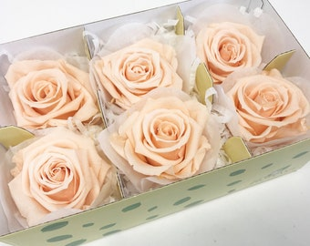 Peach, preserved roses, real roses, preserved rose, preserved flowers, home decor, wedding decor, flower gifts, wedding flowers arrangements