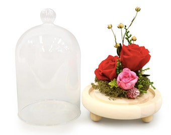 Glass dome small, flower dome, flower case, flower gift, display case, gift box, plastic dome, preserved flowers, floral arrangements