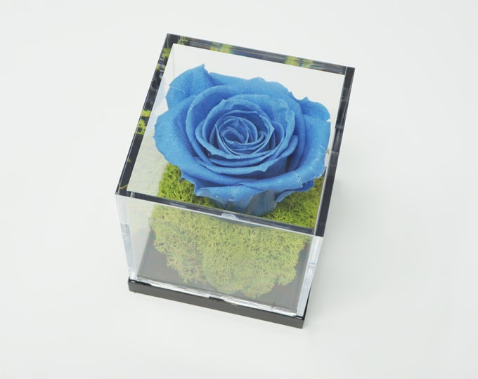 Preserved flower box, flower case, glass cube, preserved flowers gift box, display case, home decor, preserved roses, acrylic box