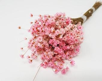 dried flowers, star flower, pink flowers, purple flowers, preserved flowers, wedding flowers, wedding decor, home decor, dried star flowers
