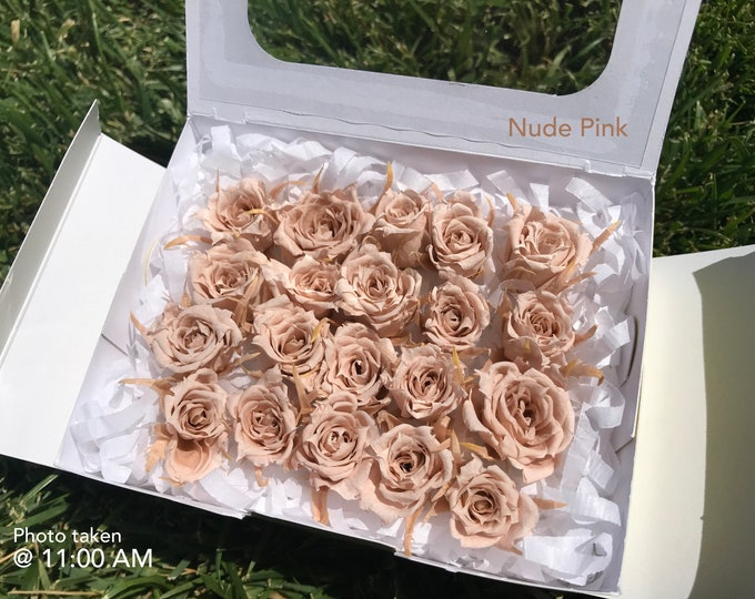Nude Pink, preserved roses, preserved flowers, wedding roses, wedding decor, home decor, floral arrangements, real roses, dried roses, small