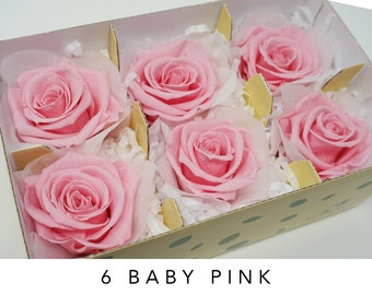 Baby pink, preserved roses, wedding roses, pink roses, preserved flowers, home decor, wedding decor, floral arrangements, real roses