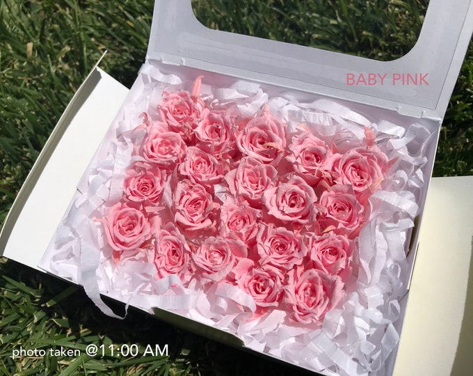 20 baby pink, preserved roses, micro rose, pink roses, real roses, preserved flowers, home decor flowers, wedding decor, floral arrangements