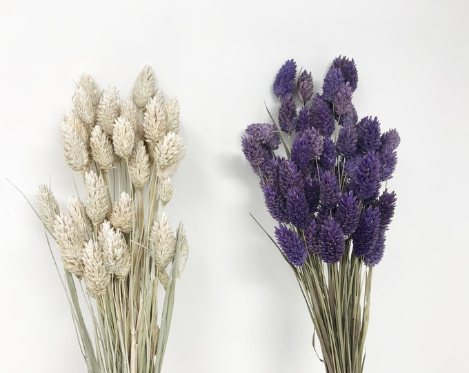 Dark Purple, phalaris dried, dried flowers, flower bouquet, home decor, wedding decor, floral arrangements, real flowers, canary grass
