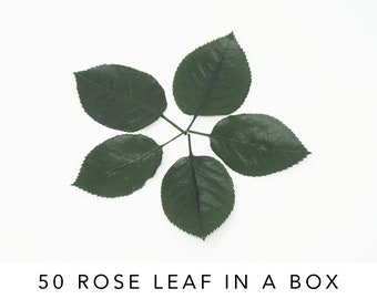 rose leaf in a box | greens | preserved flowers | dried flowers | rose leaves | flower decor | home decor | flower bouquet | corsage