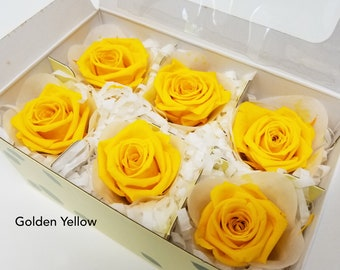 Golden Yellow, Mediana short rose, preserved roses, preserved flowers, home decor, wedding decor, floral arrangements, wedding flowers