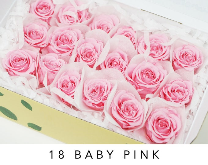 Baby pink, preserved roses, pink roses, preserved flowers, home decor flowers, wedding decor, flower arrangements, rose heads, piccola