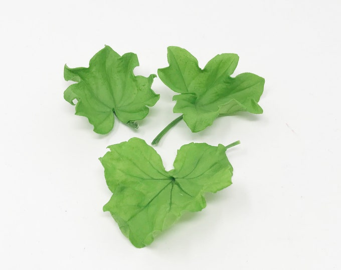 15 pcs Geranium leaf | greens | preserved leaves | preserved flowers | flower decor, home decor, wedding decor, flower bouquet, leaves