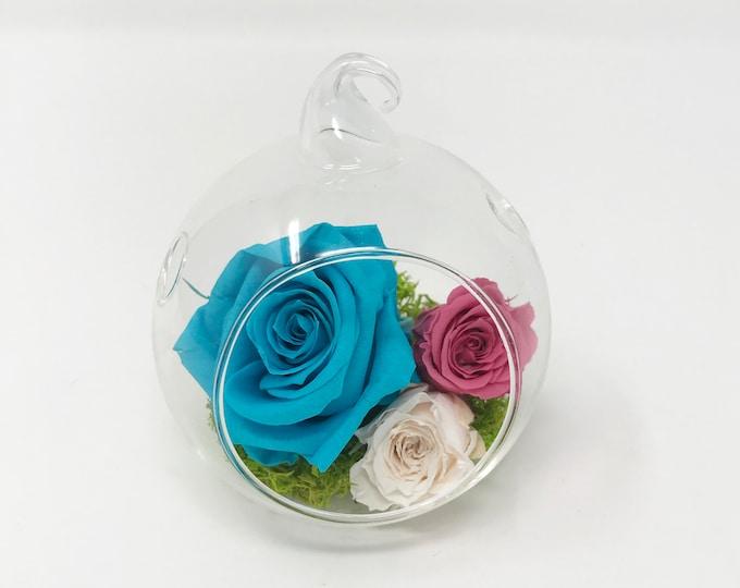 Plastic terrarium, preserved roses, dome, flower case, gift box, display case, home decor, gift box, plastic dome, flower arrangements