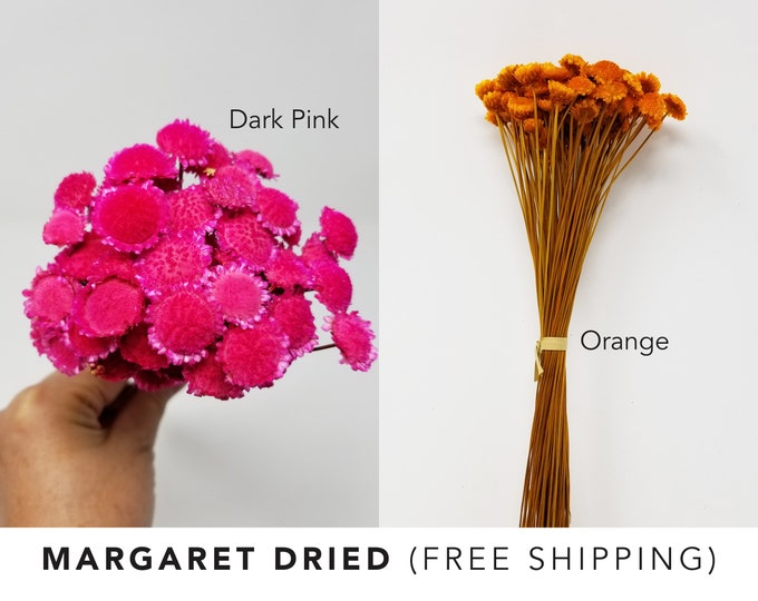 Margaret dried, dried flowers, home decor, wedding decor, wedding craft, floral arrangements, dried flower arrangements, natural dry flowers