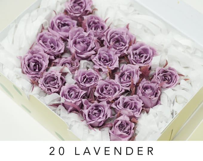 Lavender, micro, preserved roses, light purple roses, preserved flowers, home decor, wedding decor, small rose, floral arrangements