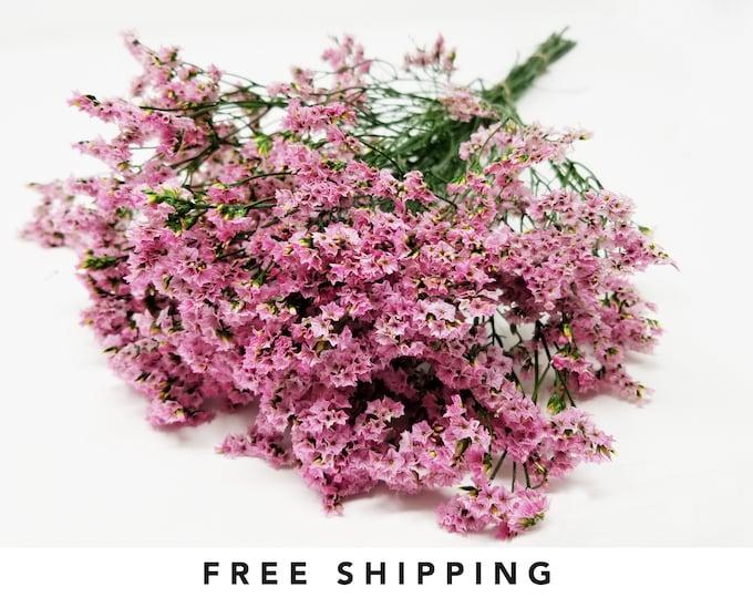 Sinesins pink, limoniums, preserved flowers, dried flowers, dried stem flowers, home decor, wedding decor, floral arrangements