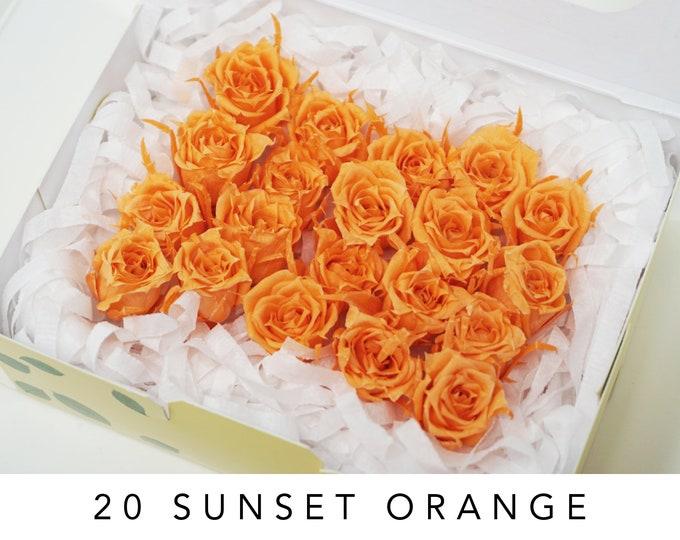 Sunset orange, preserved roses, micro roses, orange flowers, home decor flowers, wedding decor, floral arrangements, wedding roses, small