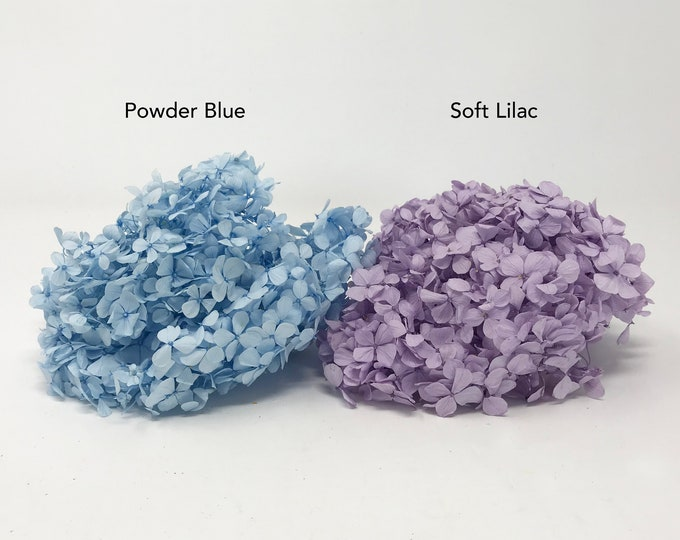 Hydrangea, 20g, Blue & soft lilac, preserved flowers, wedding decor, home decor, floral arrangements, dried,