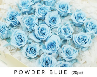 20 Powder blue, preserved roses, micro roses, wedding decor, home decor. preserved flowers, floral arrangements, wedding roses, small roses