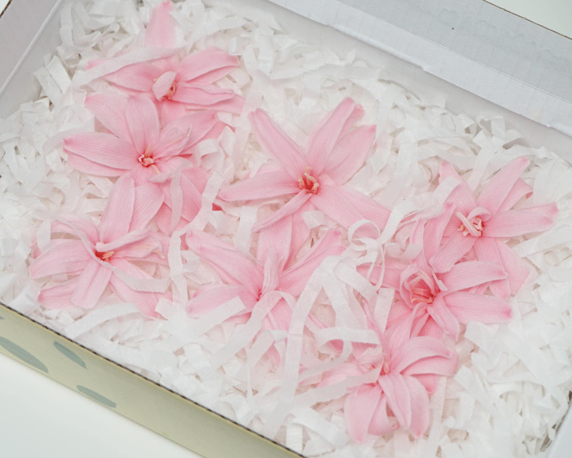 Baby pink tuberose 8 tuberose preserved flowers home decor   Etsy