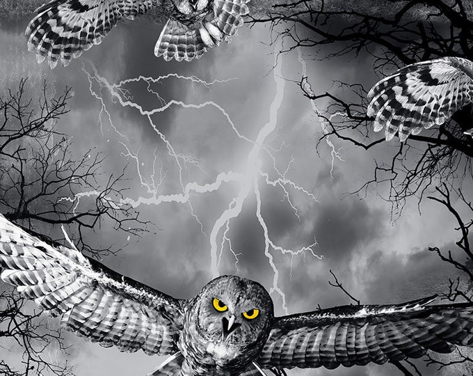 Timeless Treasures - Owls in the Graveyard Wicked-C7023-Night Cotton Woven Fabric