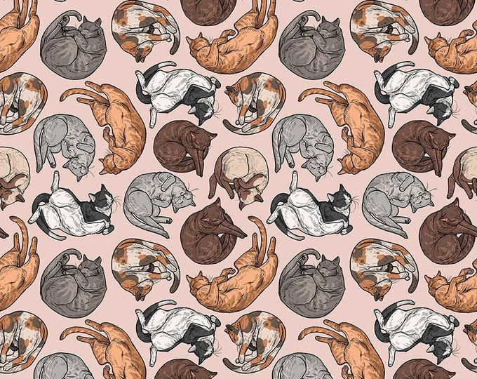 Free Spirit - Cat Tales by Rachel Hauer - Essential Supplies Charcoal PWRH007.CHARCOAL - Cotton Woven Fabric