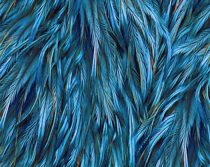 Hoffman Fabrics - Proud as a Peacock Digital - Royal Feathers  #Q4514H-18 Digitally Printed Cotton Woven Fabrics
