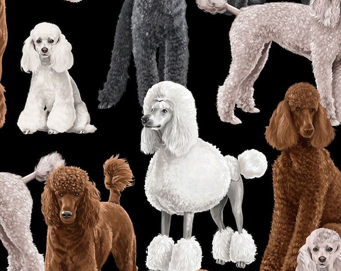 Timeless Treasures - Poodles GM-C7527-Black - Cotton Woven Fabric