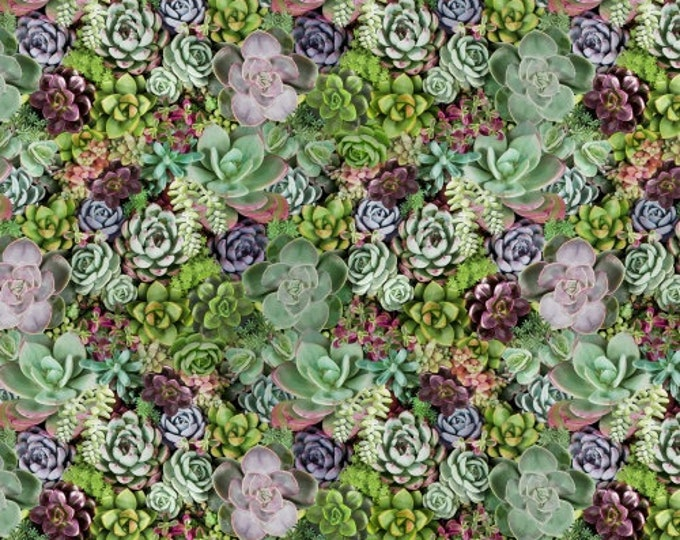 Succulents 50908-X Cotton Woven Fabric - One of a Kind by Whistler Studios for Windham Fabrics
