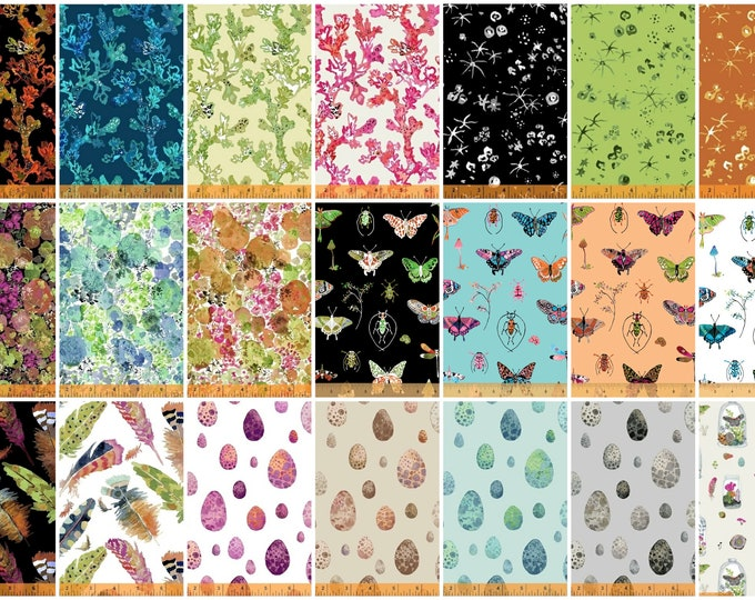 Windham - Curio by Betsy Olmsted - Fat Quarter Bundle of 21 Prints