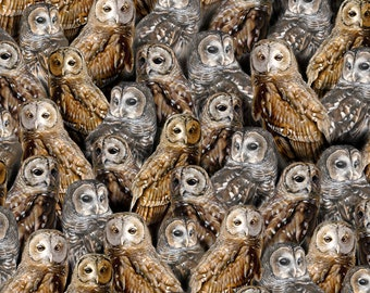 Quilting Treasures Fabric - Nocturnal Wonders by R.& B. Latham - Packed Barred Owls on Black  27066J Cotton Woven Fabric