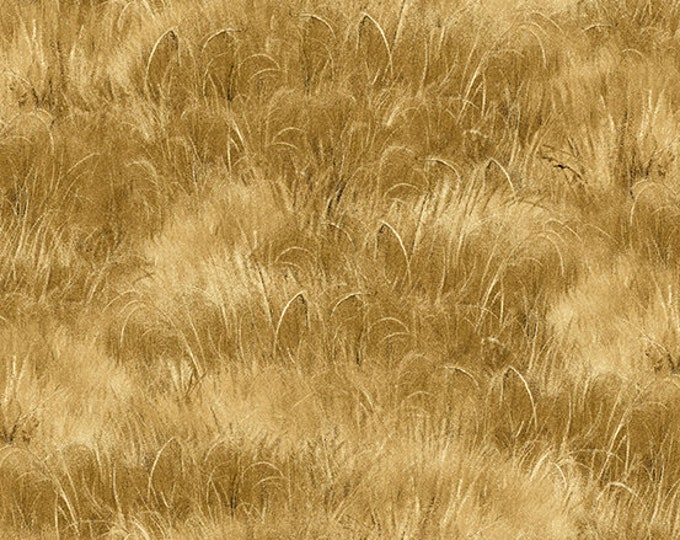 Straw Grass Cotton Woven - A-8364-N1 - Barnyard Babies by Andover Fabrics