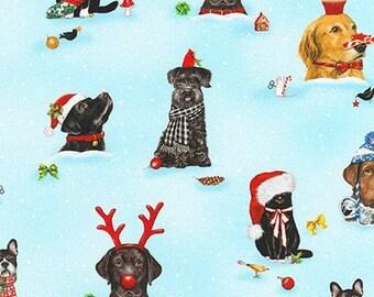 Robert Kaufman Fabrics - Holly Jolly Christmas - #AMKD-18572-223 HOLIDAY Cotton Woven Fabric